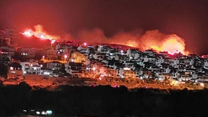 İzmir'de makilik alandaki yangına müdahale ediliyor