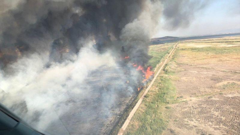 İzmir'de sazlık alanda çıkan yangına müdahale ediliyor
