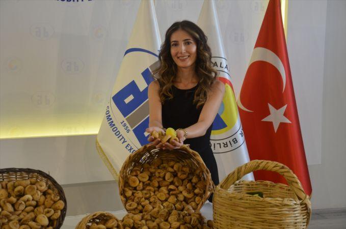 Aydın'da sezonun ilk kuru inciri borsaya geldi