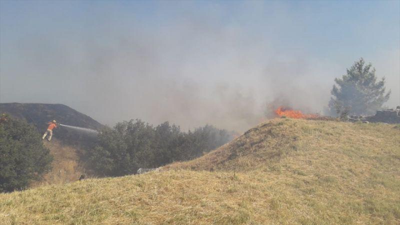 Aydın'da zirai alanda çıkan yangın Priene Antik Kenti'ndeki ağaçlara sıçradı