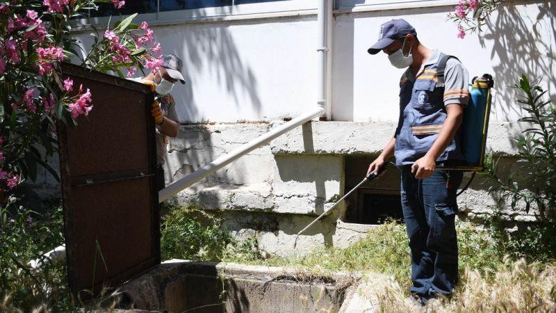 Kuşadası'nın 23 mahallesinde yaz sezonu öncesi vektörel mücadele sürüyor