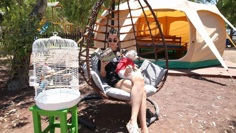 Aydın'da alternatif turizmde yeni rota: Ada Camping