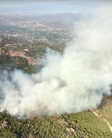 Aydın Karpuzlu'da orman yangını