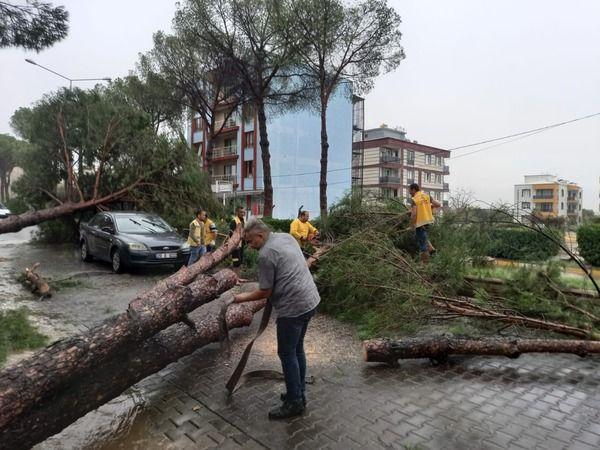 Aydın Büyükşehir Belediyesi ekiplerinden hızlı müdahale