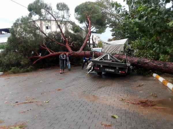 Aydın'da fırtınanın bilançosu; 7 yaralı, 15...