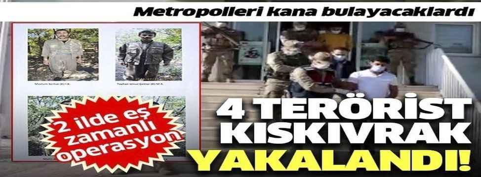 Diyarbakır ve İstanbul'da terör operasyonu: Eylem hazırlığındaki 4 terörist yakalandı!