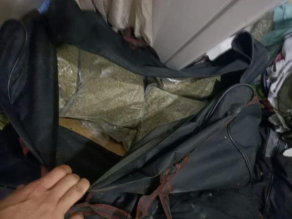 """(Özel) """"Çaki"""" lakaplı zehir tacirinin zula evine operasyon: 55 kilogram """"bonzai"""" ele geçirildi"""