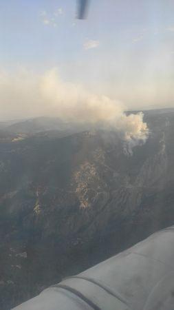Tarsus'taki orman yangınında soğutma çalışması devam ediyor