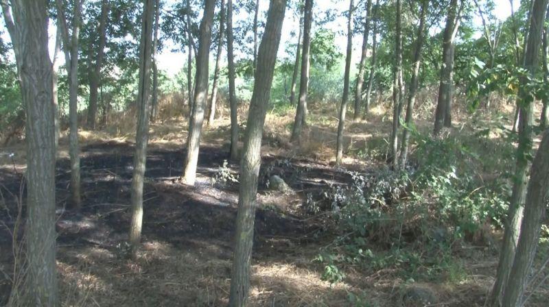 (Özel) İstanbul'da ormanın yandığını gören köylüler erken müdahale ile facianın önüne geçti