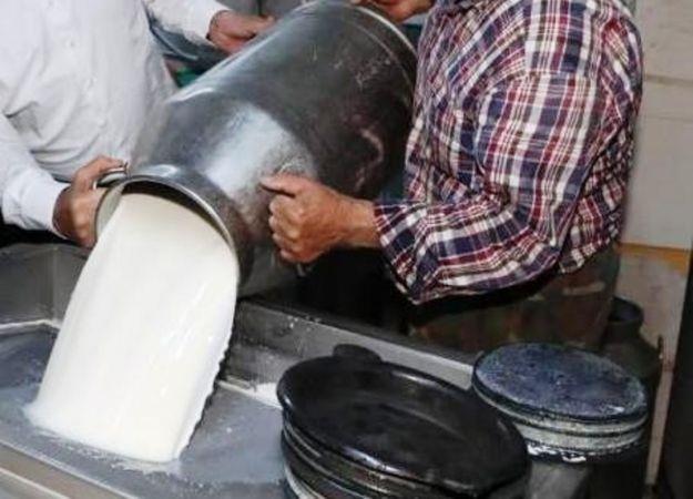 Toplanan inek sütü miktarı yüzde 1,8 arttı