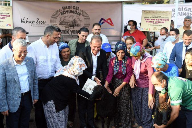 Büyükşehir Belediyesi, Musalı'da üreticiye koyun, keçi ve yem dağıttı