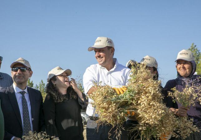 Atalık Gülnar nohudunun ilk hasadı, Başkan Seçer'in katılımıyla yapıldı
