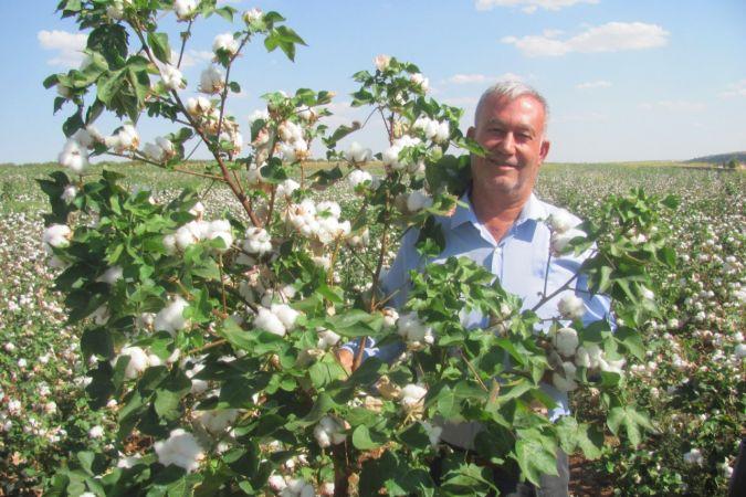 Gaziantep'te beyaz altında rekolte sevinci