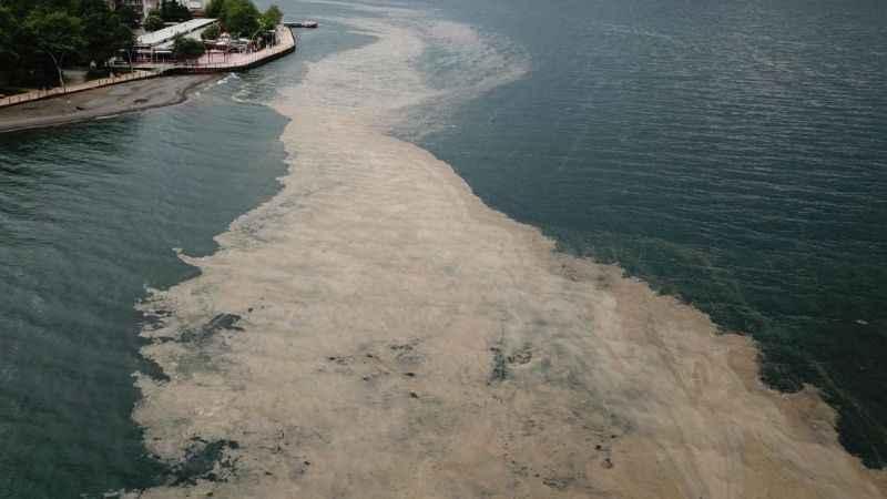 Büyükakın: Deniz salyası için eylem planı hazırlanacak