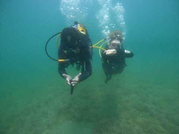Deniz salyası dalgıçları Marmara'dan uzaklaştırdı