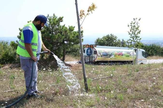 Ağaçlara can suyu Büyükşehir'den