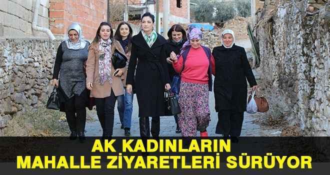 AK kadınların mahalle ziyaretleri sürüyor