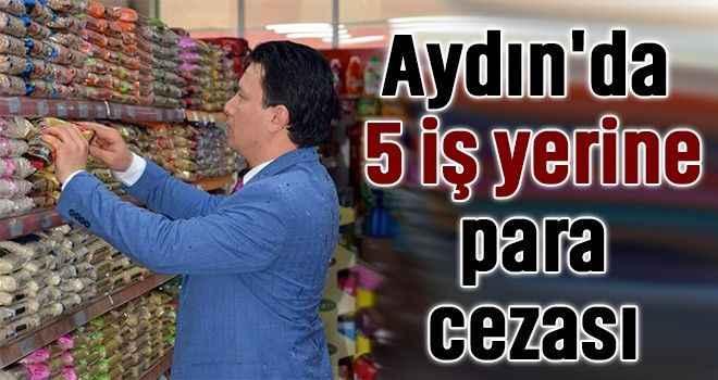 Aydın'da 5 iş yerine para cezası