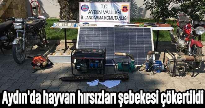 Aydın'da hayvan hırsızları şebekesi çökertildi