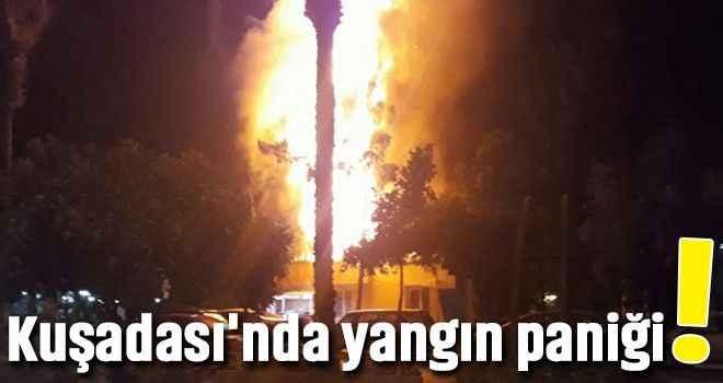 Kuşadası'nda yangın paniği!