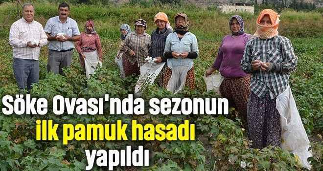 Söke Ovası'nda sezonun ilk pamuk hasadı yapıldı