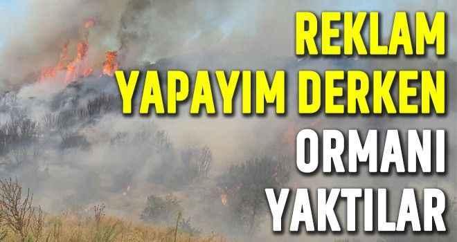 Reklam yapayım derken ormanı yaktılar