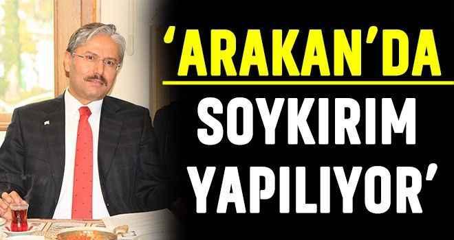 'Arakan'da soykırım yapılıyor'