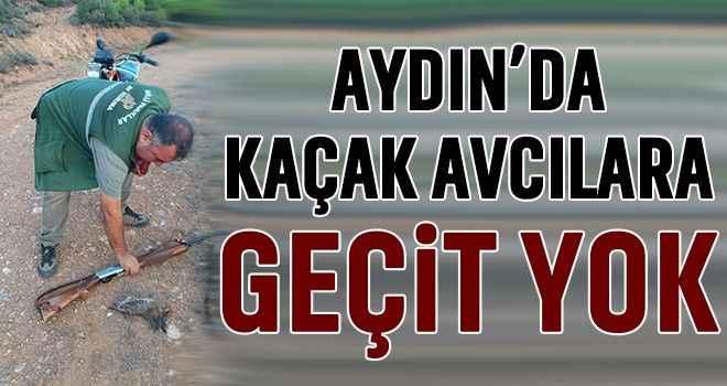 Aydın'da kaçak avcılara geçit yok