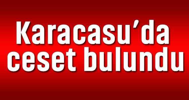 Karacasu'da ceset bulundu