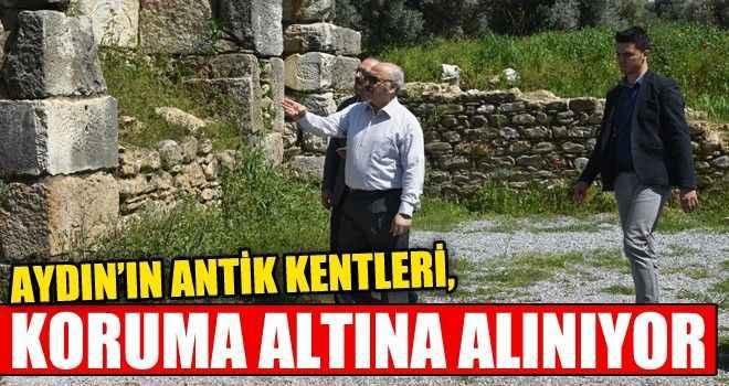 Aydın'ın antik kentleri, koruma altına alınıyor
