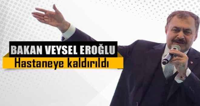 Bakan Veysel Eroğlu hastaneye kaldırıldı
