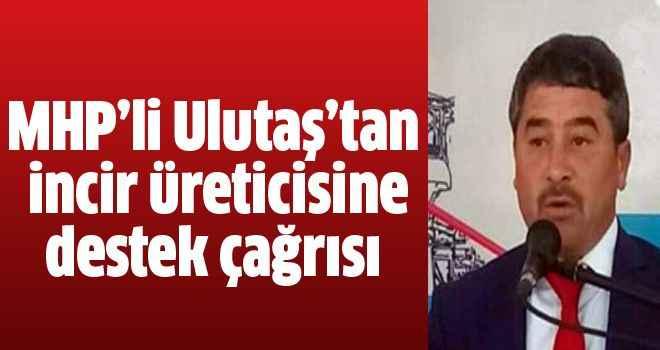 MHP'li Ulutaş'tan incir üreticisine destek çağrısı