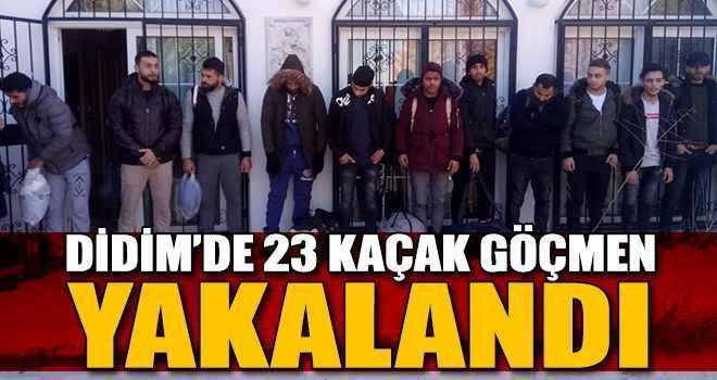Didim'de 23 kaçak göçmen yakalandı