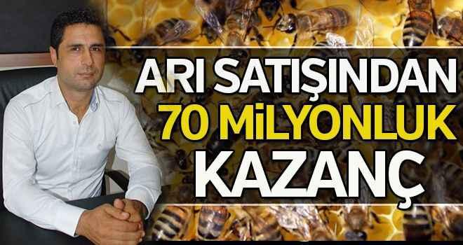 Arı satışından 70 milyonluk kazanç