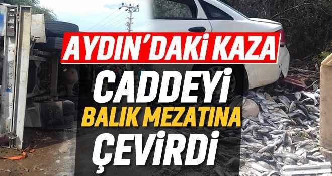 Aydın'daki kaza caddeyi balık mezatına çevirdi!