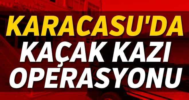 Karacasu'da kaçak kazı operasyonu