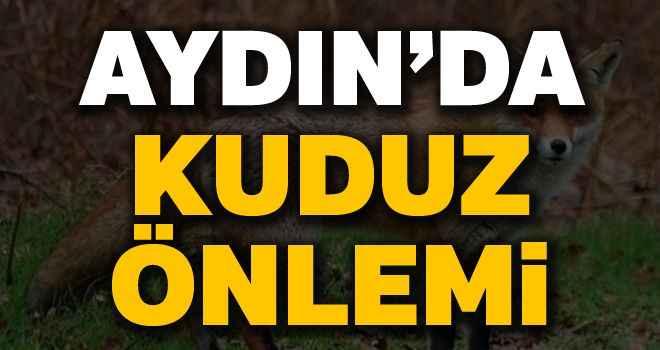 Aydın'da kuduz önlemi