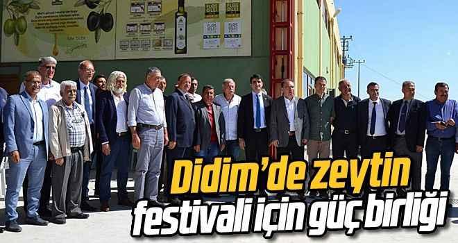 Didim'de zeytin festivali için güç birliği