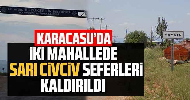 Karacasu'da iki mahallede sarı civciv seferleri kaldırıldı