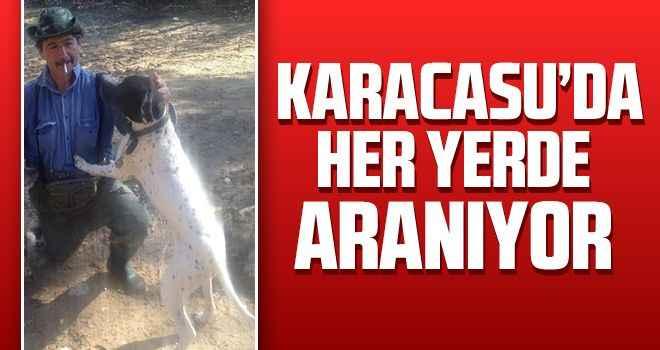 Karacasu'da her yerde aranıyor