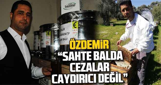 """Özdemir: """"Sahte balda cezalar caydırıcı değil"""""""