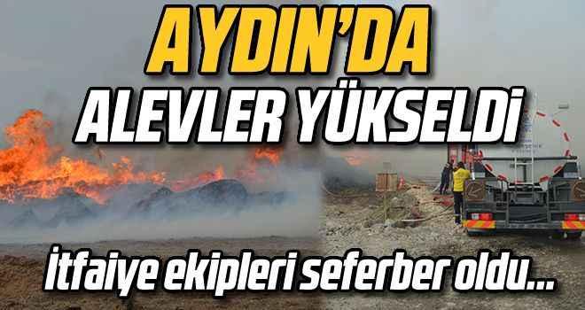 Aydın'da pamuk çalılarının toplandığı alanda yangın