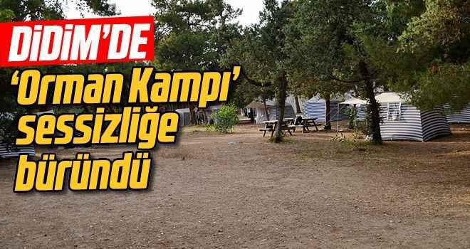 Didim'de 'Orman Kampı' sessizliğe büründü