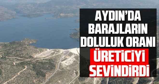 Aydın'da barajların doluluk oranı üreticiyi sevindirdi