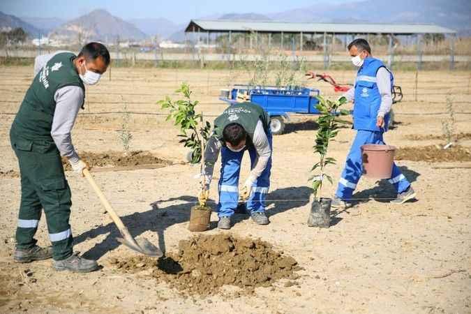 BŞB'nin Çiftçi Merkezi gelişmeye devam ediyor