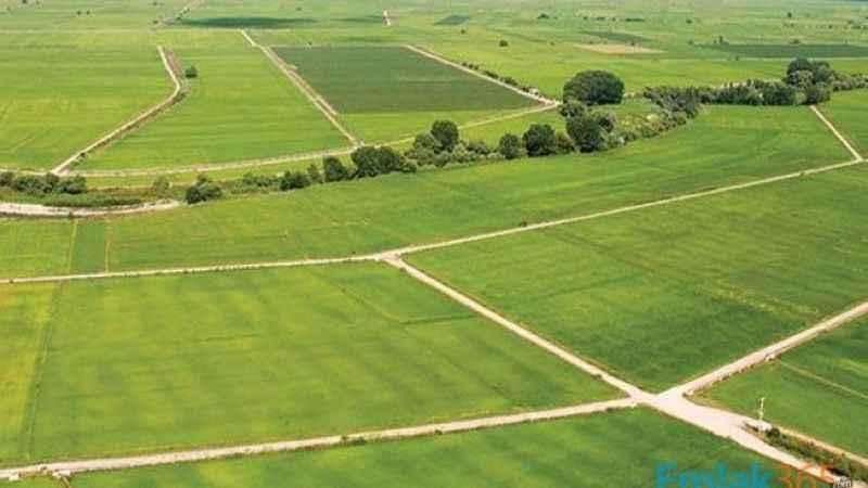 Efeler'de 2.894,93 m² arsa icradan satılıktır