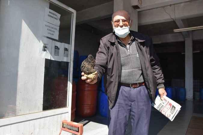 Kilosu 250 liraları bulan kuzu göbeği çıkmaya başladı