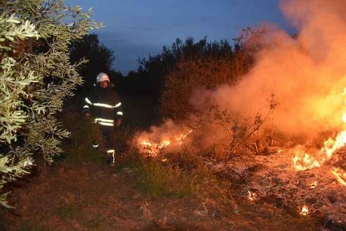 Karacasu'da korkutan yangın - Aydın Haberleri - Aydın Ses Gazetesi