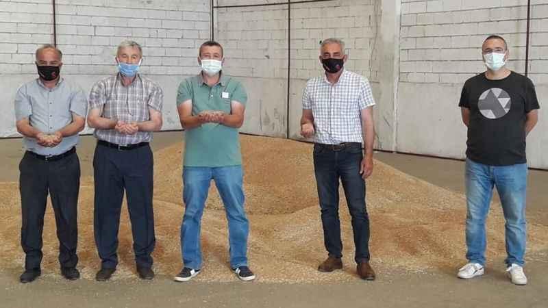 Aydın Tariş, buğday alımına başladı