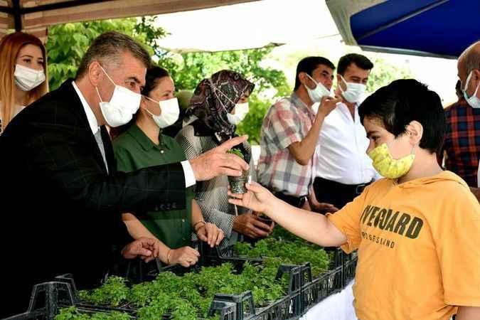 Buharkent Belediyesi, vatandaşlara fesleğen dağıttı